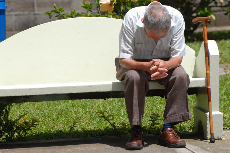Promueven investigación sobre envejecimiento saludable
